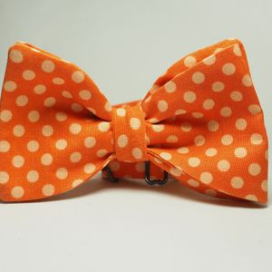 Men's Beautiful Bow tie